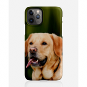 Designer skal till Apple iPhone 11 Pro Max - Pat2493