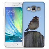Skal till Samsung Galaxy A3 - Gråsparv